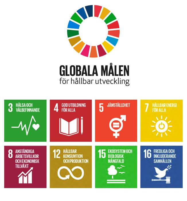 FNs Globala mål | Smarteyes hållbarhetsrapport